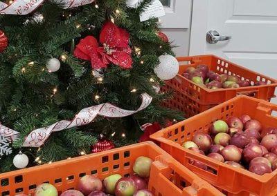 Dykstra Family Orchards